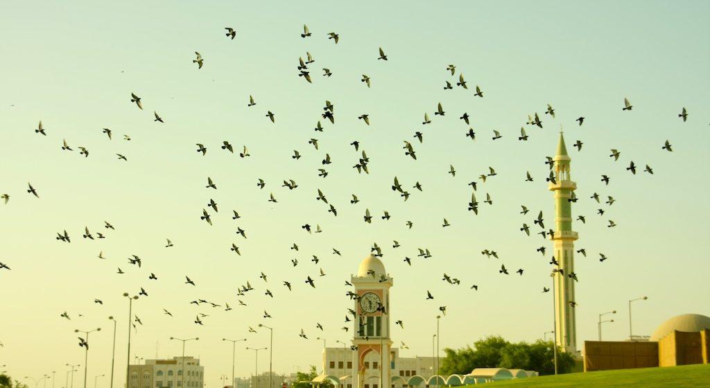 Bahagia di Idul Fitri 1436H